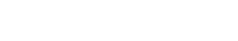 Swedish Research Councol Logo